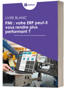 Livre blanc PMI ERP Performance